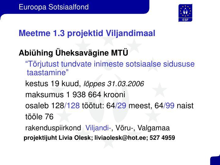 Meetme 1.3 projektid Viljandimaal