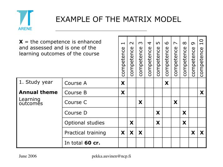 EXAMPLE OF THE MATRIX MODEL