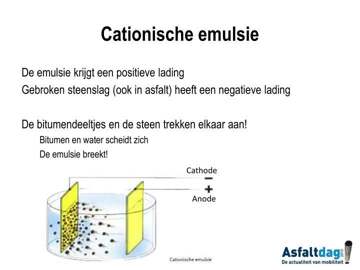 Cationische