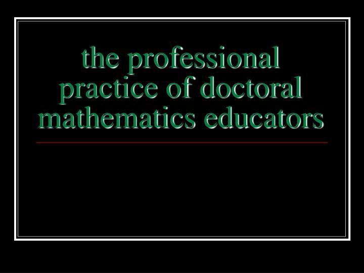 the professional practice of doctoral mathematics educators