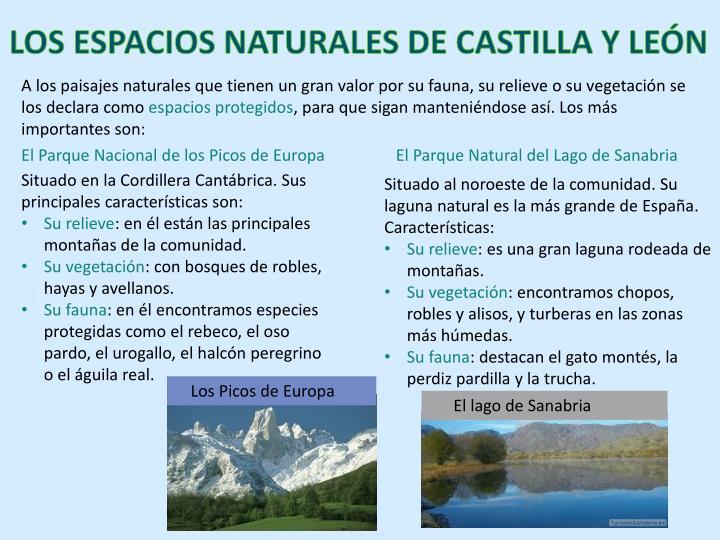 LOS ESPACIOS NATURALES DE CASTILLA Y LEÓN