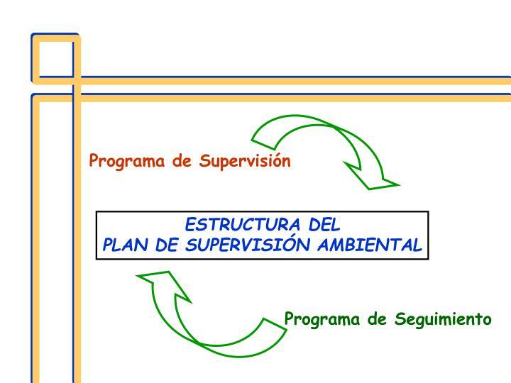 Programa de Supervisión