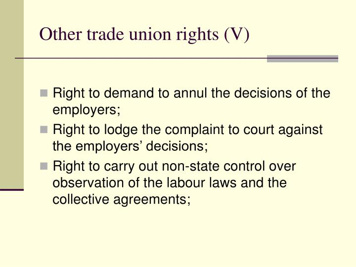Other trade union rights