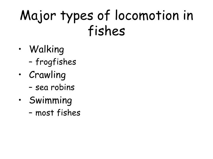 Major types of locomotion in fishes