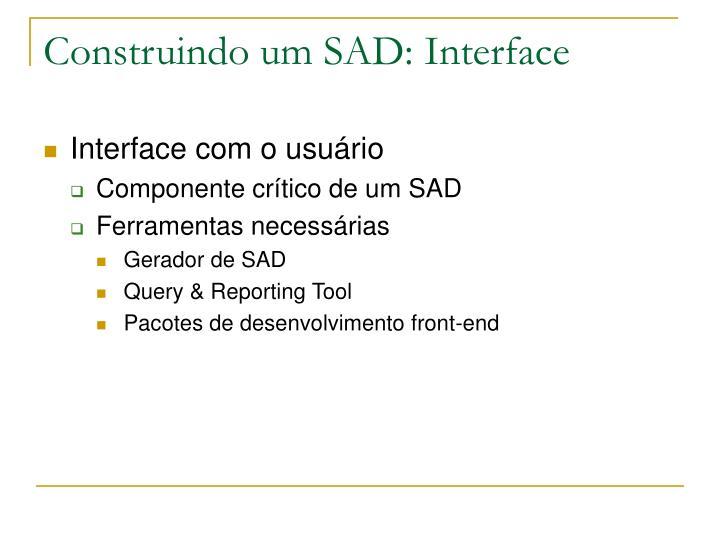 Construindo um SAD: Interface