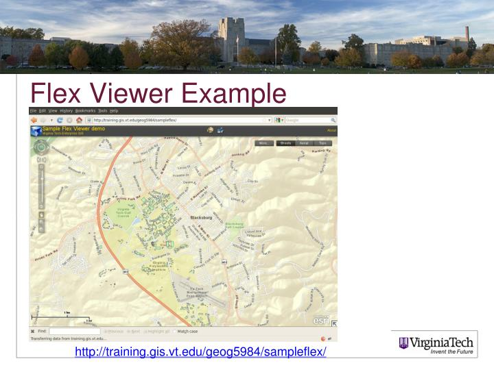 Flex Viewer Example