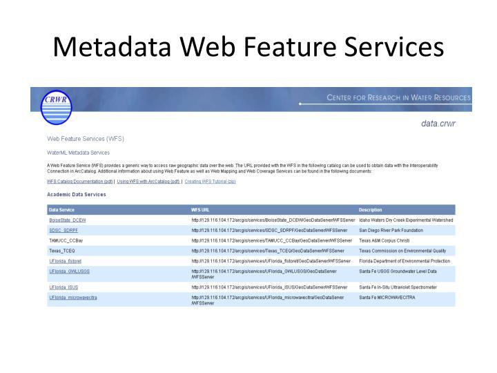 Metadata Web Feature Services