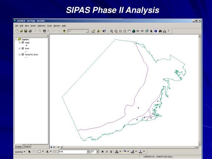SIPAS Phase II Analysis