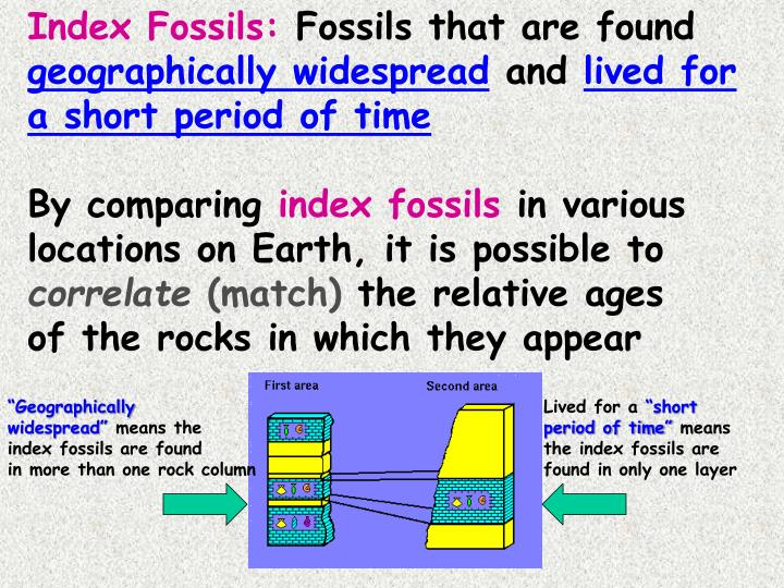 Index Fossils: