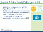 example 1 public private partnerships for sd