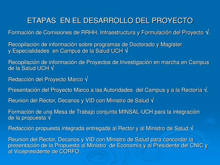 ETAPAS  EN EL DESARROLLO DEL PROYECTO