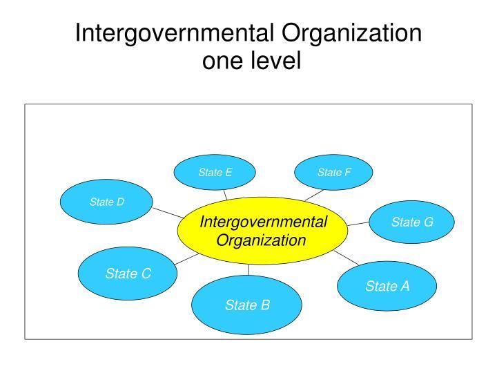 Intergovernmental Organization