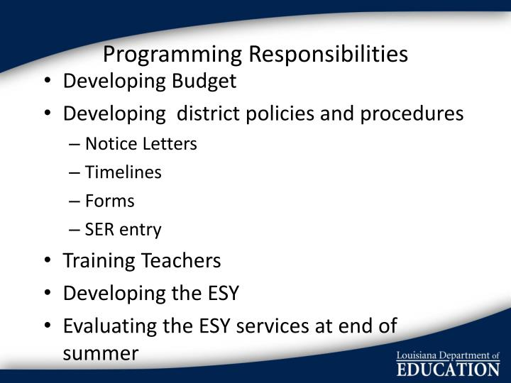 Programming Responsibilities