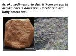 arroka sedimentario detritikoen artean bi arroka bereiz daitezke hareharria eta konglomeratua