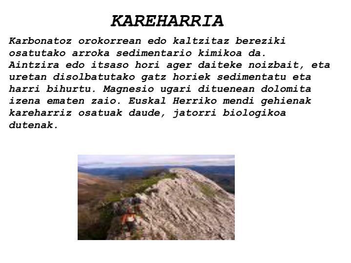 KAREHARRIA