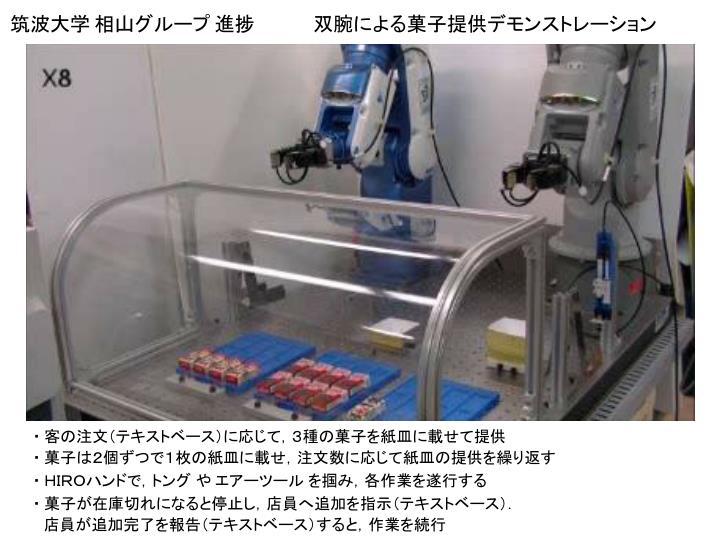 筑波大学 相山グループ 進捗             双腕による菓子提供デモンストレーション