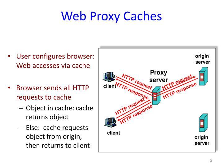 Web Proxy Caches