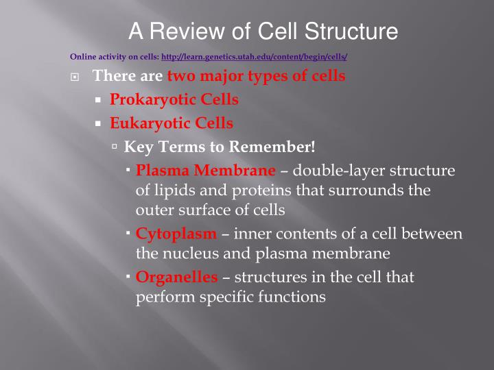 A Review of Cell Structure