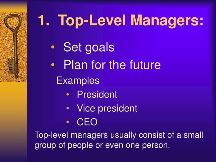 1.  Top-Level Managers: