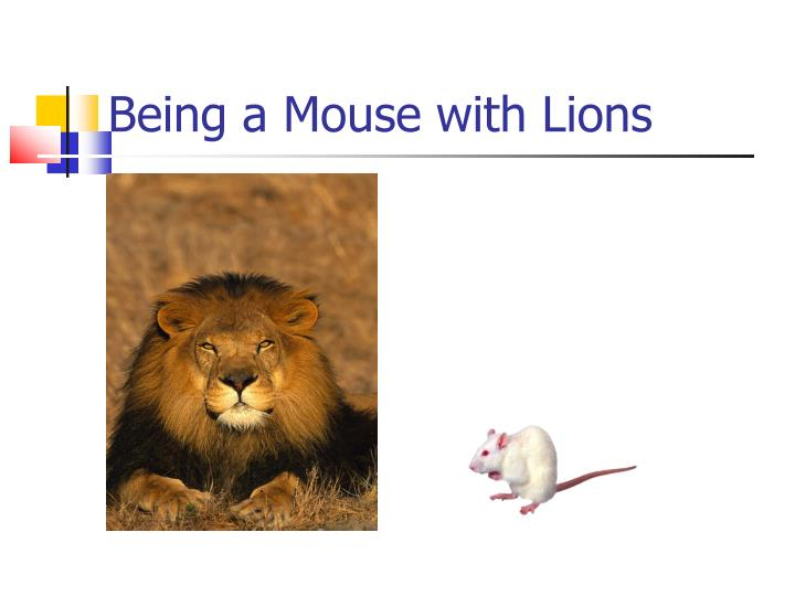 Being a Mouse with Lions