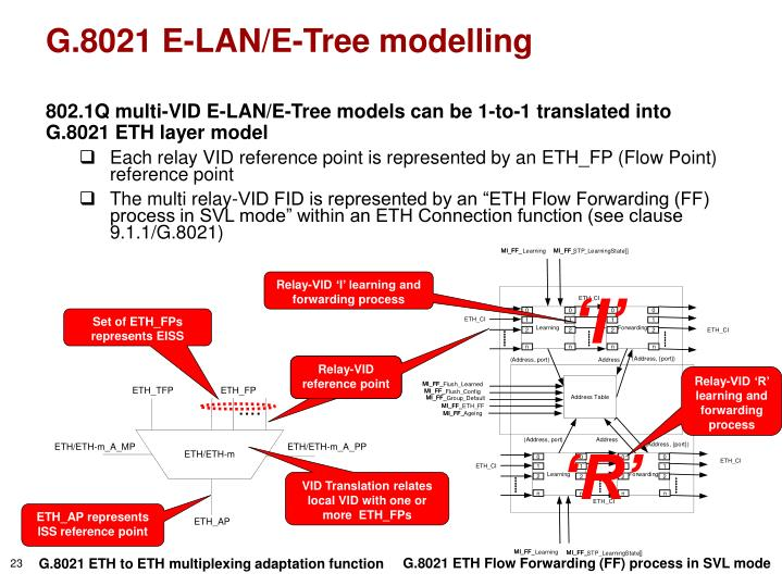 G.8021 E-LAN/E-Tree modelling