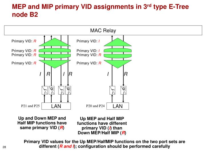 Up MEP and Half MIP functions have different primary VID (