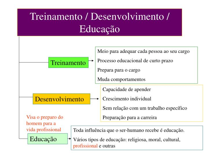 Treinamento / Desenvolvimento / Educação