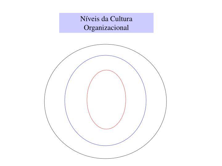 Níveis da Cultura Organizacional