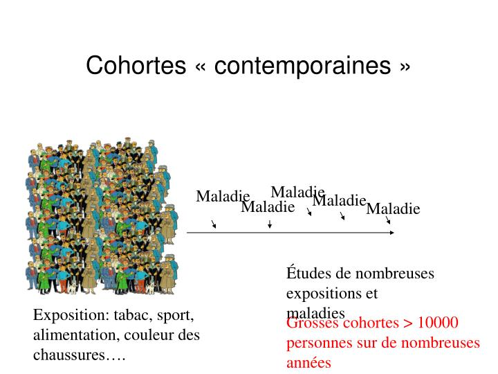 Cohortes « contemporaines »