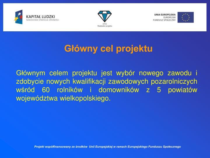 Główny cel projektu
