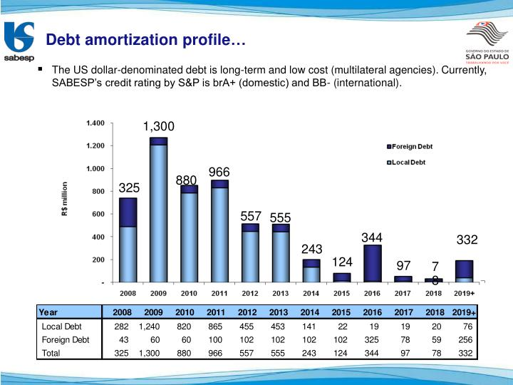 Debt amortization profile