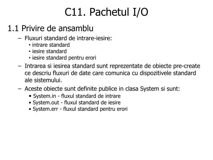 C11. Pachetul I/O