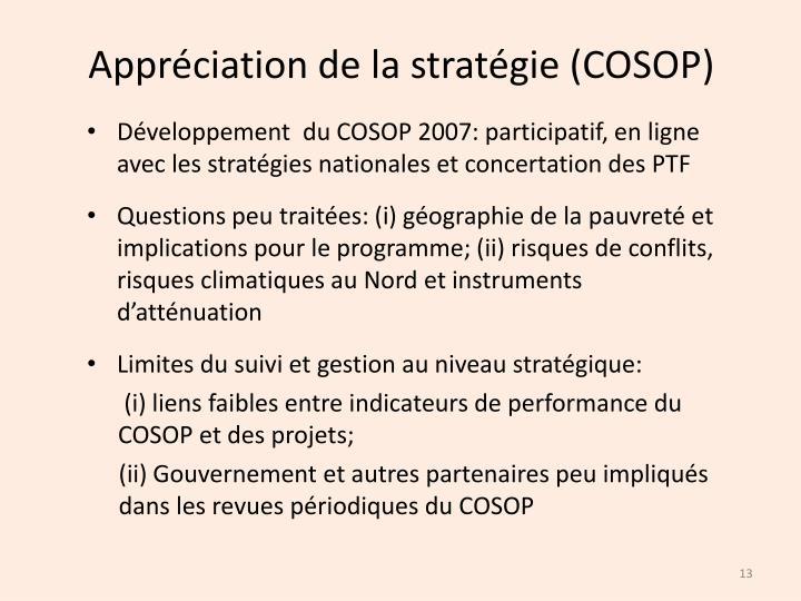 Appréciation de la stratégie (COSOP)