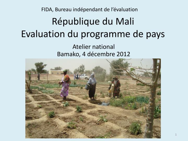 R publique du mali evaluation du programme de pays