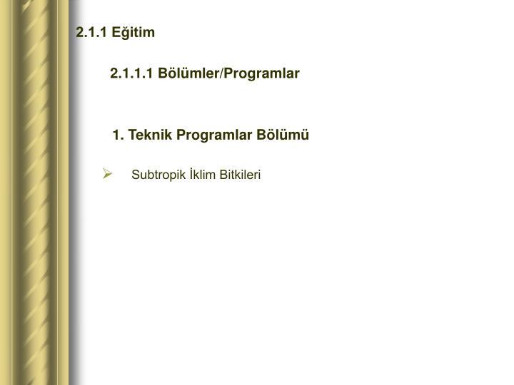 2.1.1 Eğitim