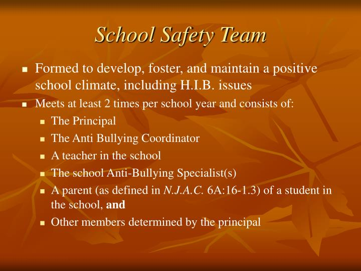 School Safety Team