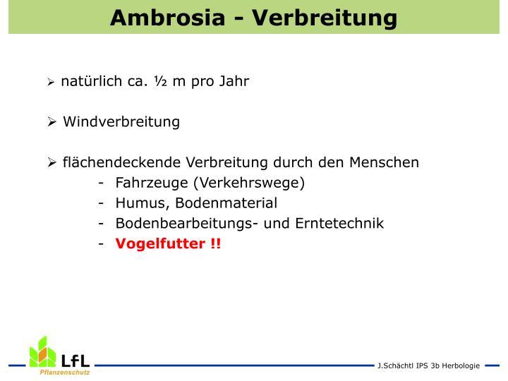 Ambrosia - Verbreitung