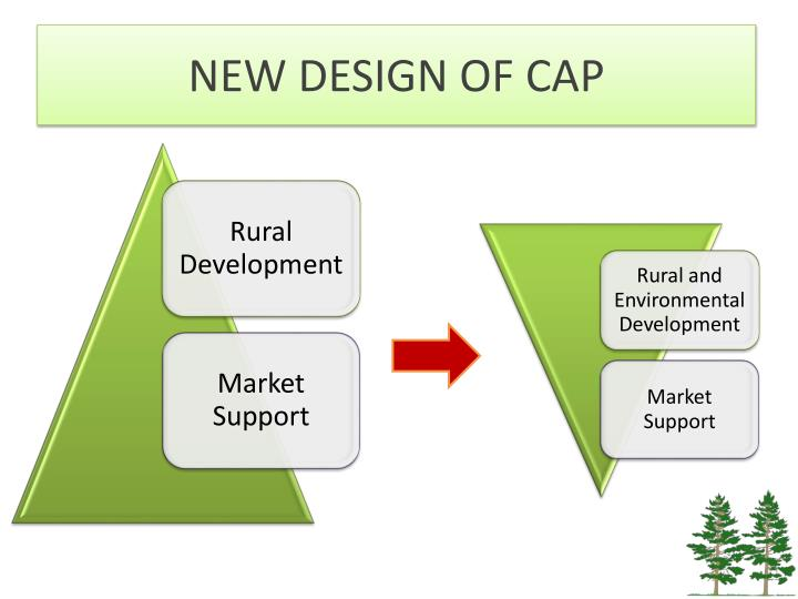 NEW DESIGN OF CAP