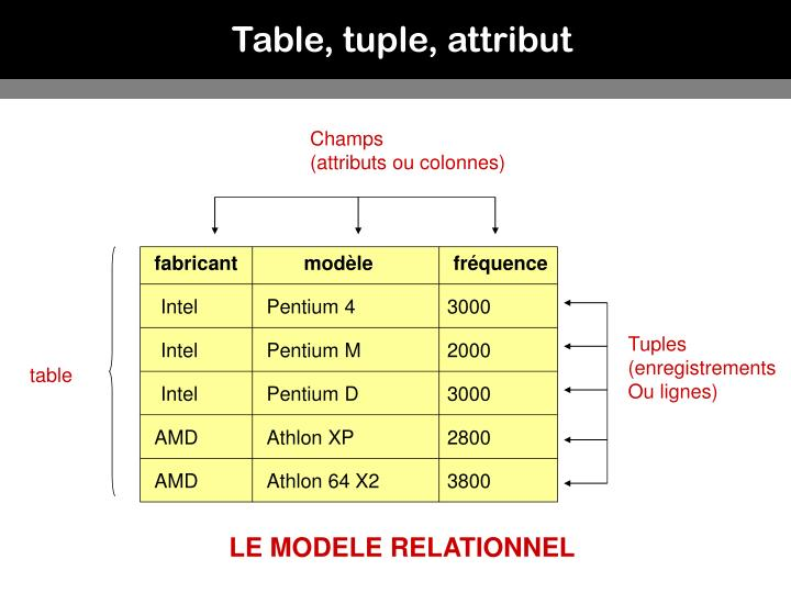 Table, tuple, attribut