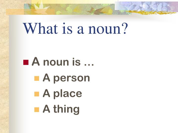 What is a noun
