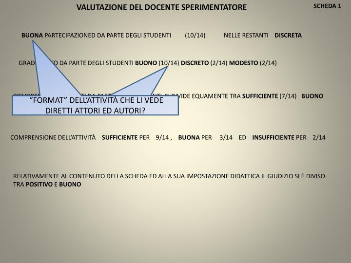 VALUTAZIONE DEL DOCENTE SPERIMENTATORE