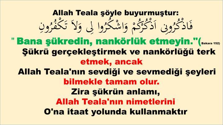 Allah Teala şöyle buyurmuştur
