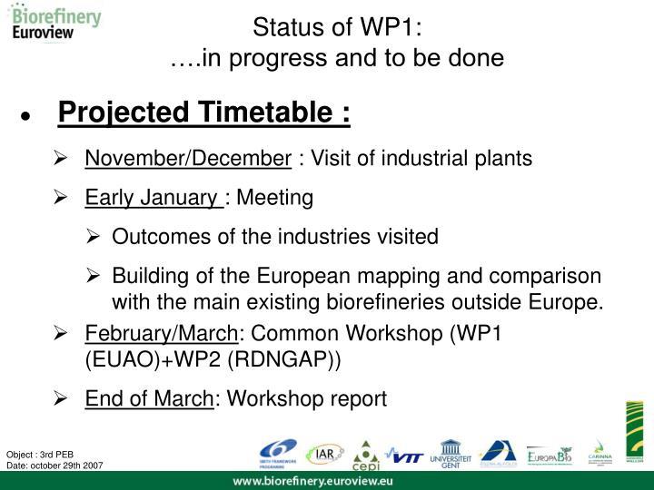Status of WP1: