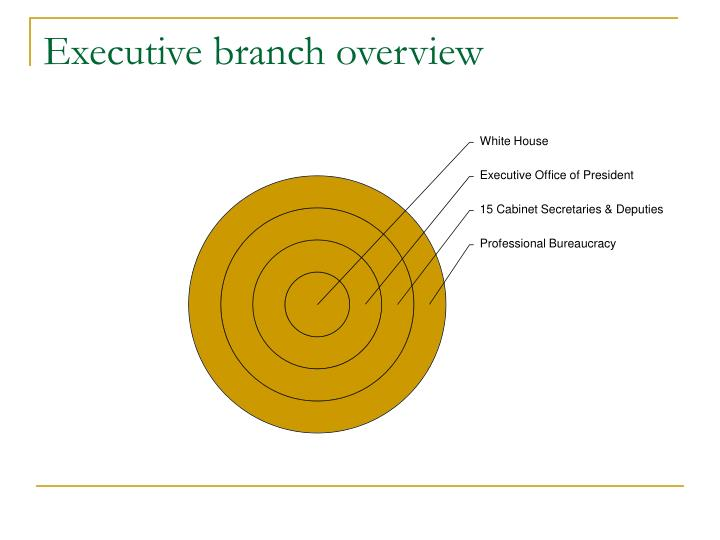 Executive branch overview