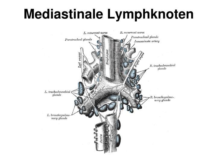 Mediastinale Lymphknoten