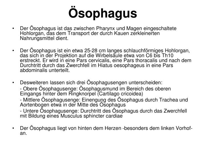 Ösophagus