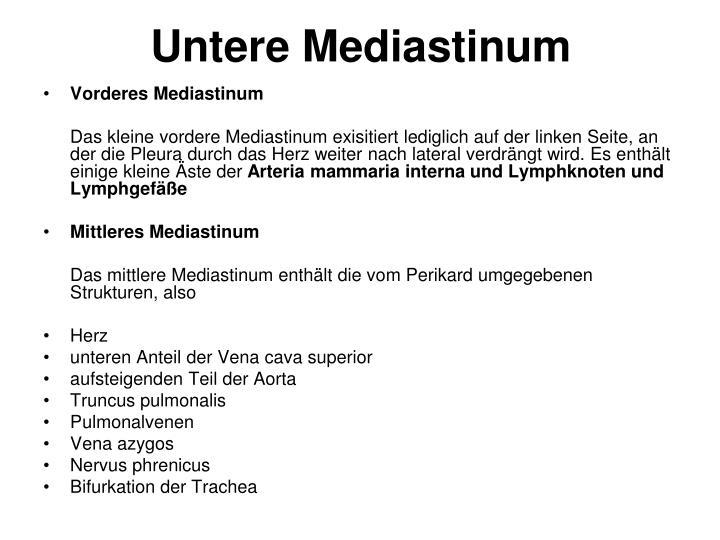 Untere Mediastinum