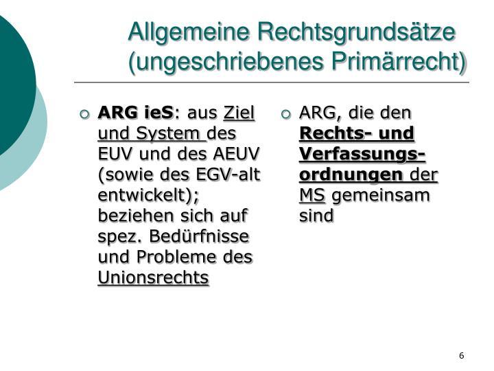 Allgemeine Rechtsgrundsätze (ungeschriebenes Primärrecht)