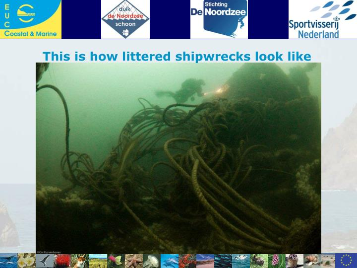 This is how littered shipwrecks look like