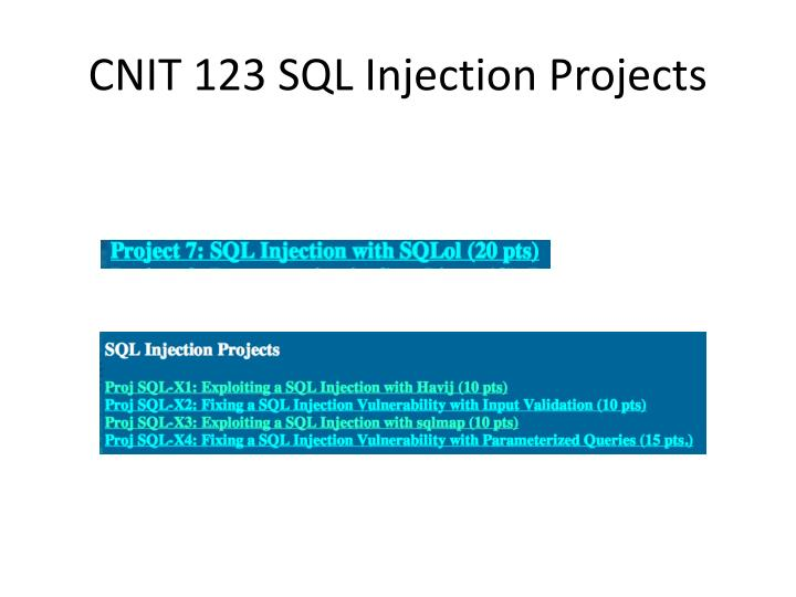 CNIT 123 SQL Injection Projects